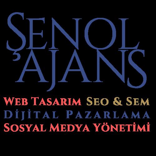 Şenol Ajans Web Tasarım Atölyesi